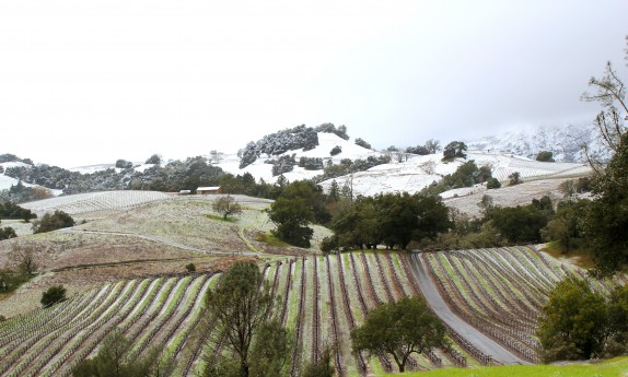 Snow in the wine country