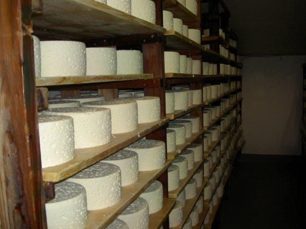 Pt Reyes Cheese