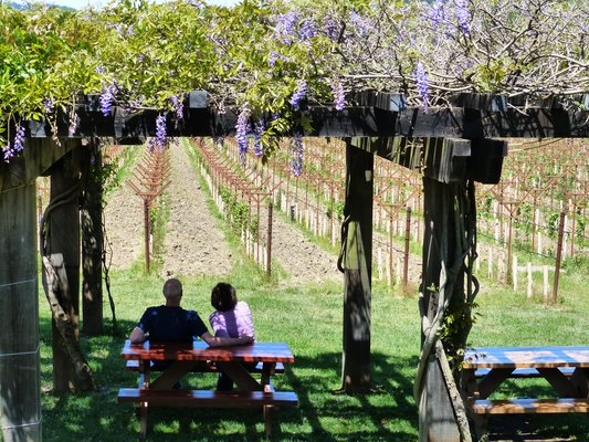 Picnic at Navarro Vineyards