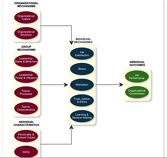 A high level view of all factors that influence organizational behavior