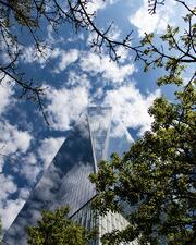 An upward shot of a tall glass building, a blue but cloudy sky, and trees.