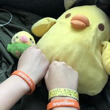 Two students with orange Brightspark bands in front of two bird stuffed toys.