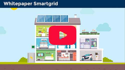 Whitepaper Smart Grid – Video y PDF