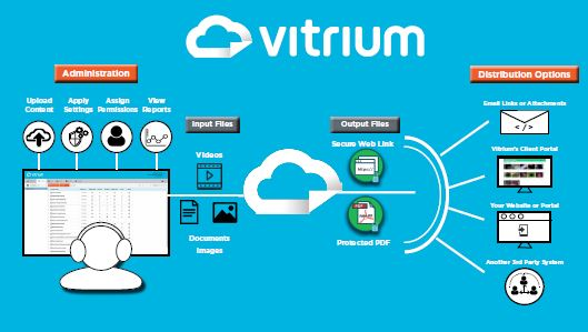 Infographic: Vitrium's Process Overview