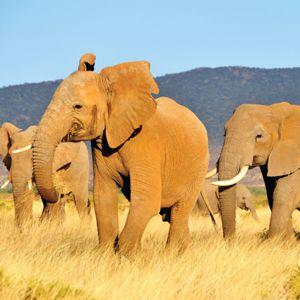 Energieneutraal bouwen met de natuur als catalogus de olifant for Energieneutraal bouwen