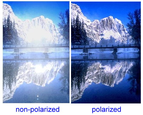 Polarised Sunglasses  what exactly do affordable polarized sunglasses do