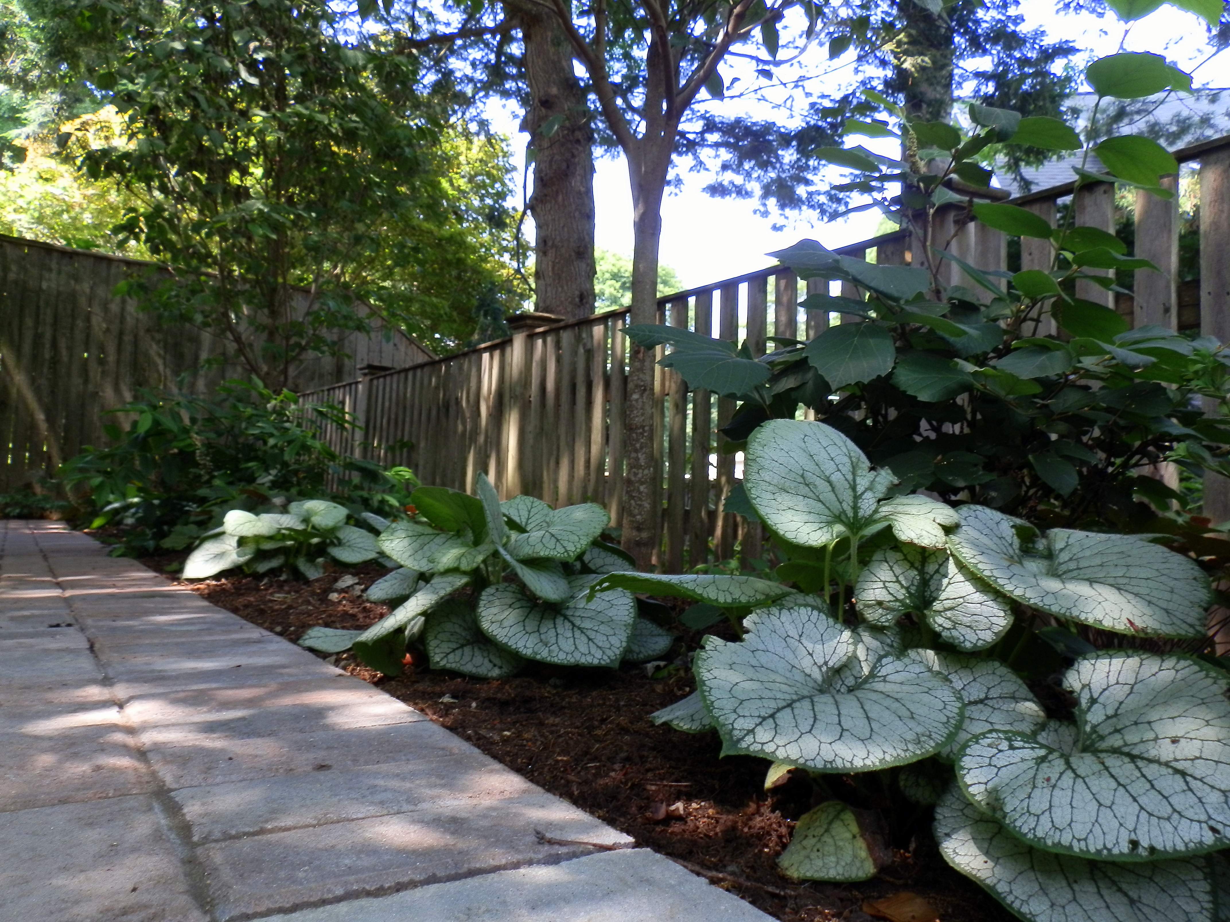Garden Shade Shade Gardens Indianapolis Wooden Slated Plant