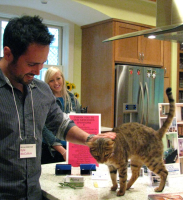 Purple Heron Homes Tour with Cat