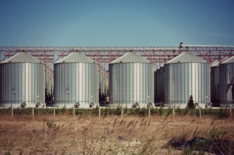 Moving from Totes to Silo Storage Tanks of Olive Oil: When