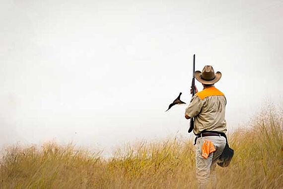 Pheasant-Rise