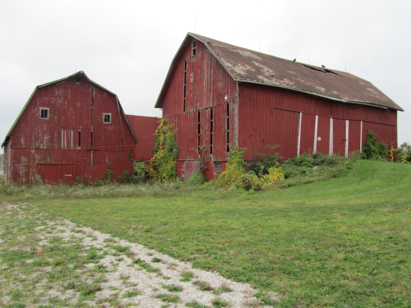 ann-arbor-mi-barn-salvaged-barn-wood