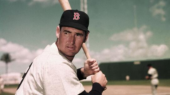 ted williams-3