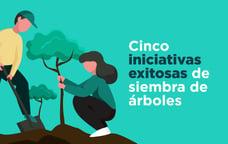 Cinco iniciativas exitosas de siembra de árboles
