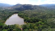 Cinco reflexiones sobre la conservación de los ecosistemas