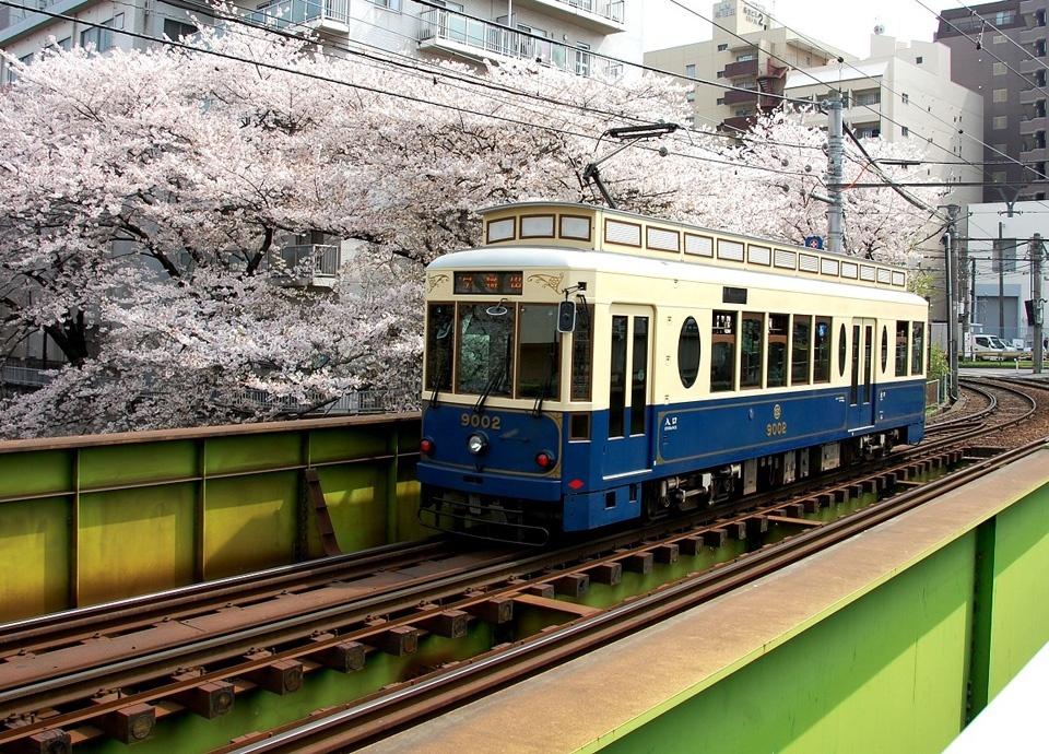 お花見ステイプラン「東京桜ステイ 2017」