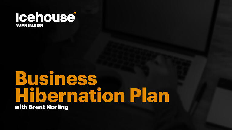 The Business Hibernation Plan