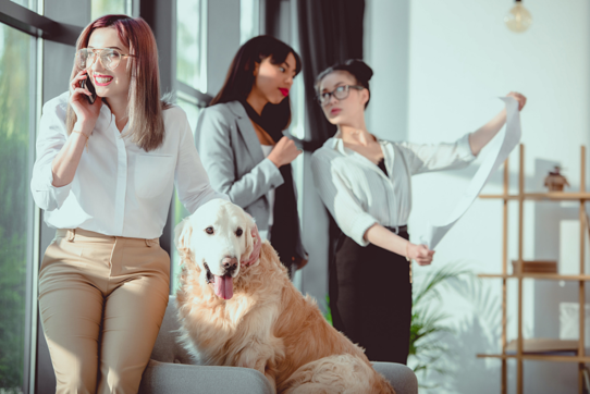 The ADA and Service Animals in the Workplace