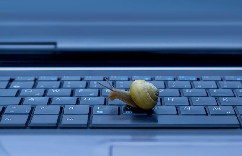 Blog_SnailKeyboard_iStock-178042221