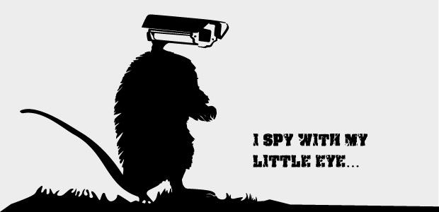 RAT: sozusagen eine Ratte mit einer Kamera als Kopf