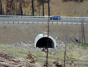 US 395 Crossing of Vance Creek