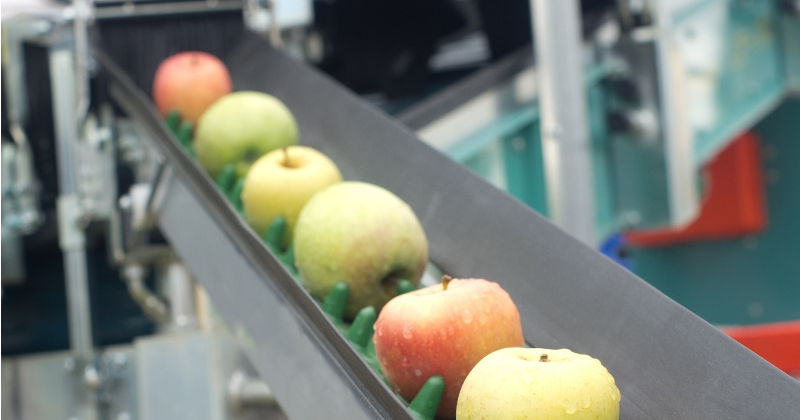 ERP enables food waste reduction