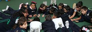 Educación socioemocional, habilidades que los niños necesitan