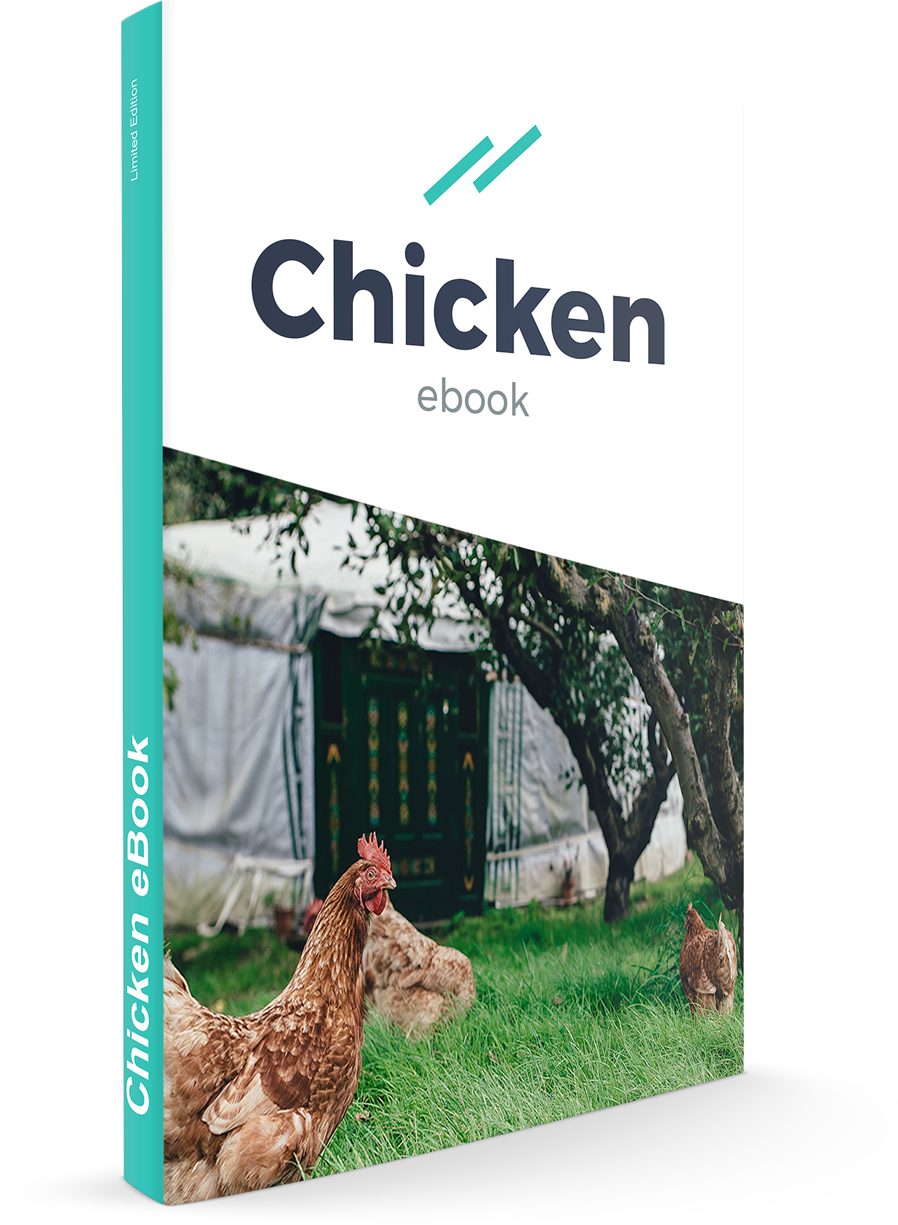 Act2 Chicken Ebook