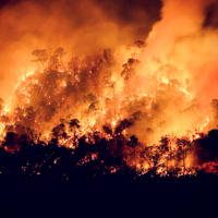 Wildfires in California Prompt HOS Suspension.png
