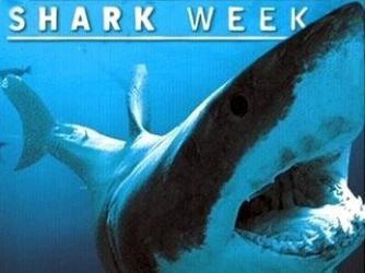shark week show