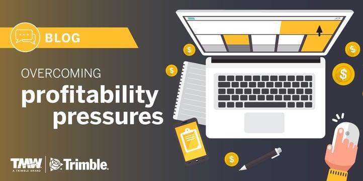 profitability_pressures