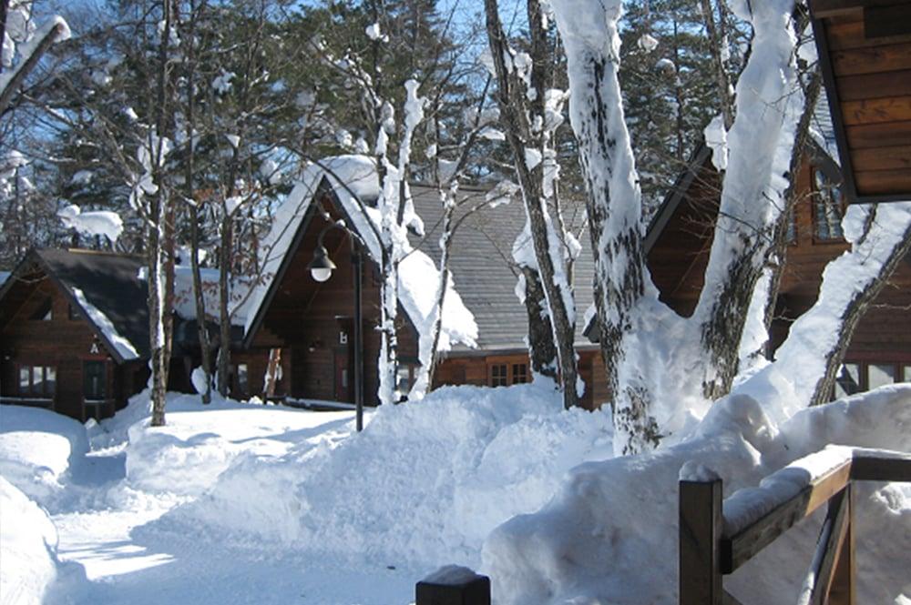 BROWNIE cottage winter1-1