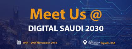 The Digital Saudi 2030 Program