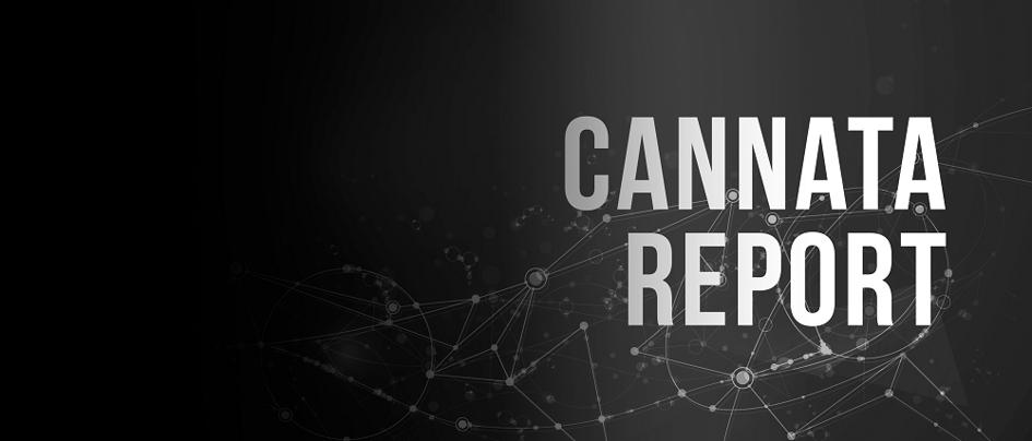 Cannata Report