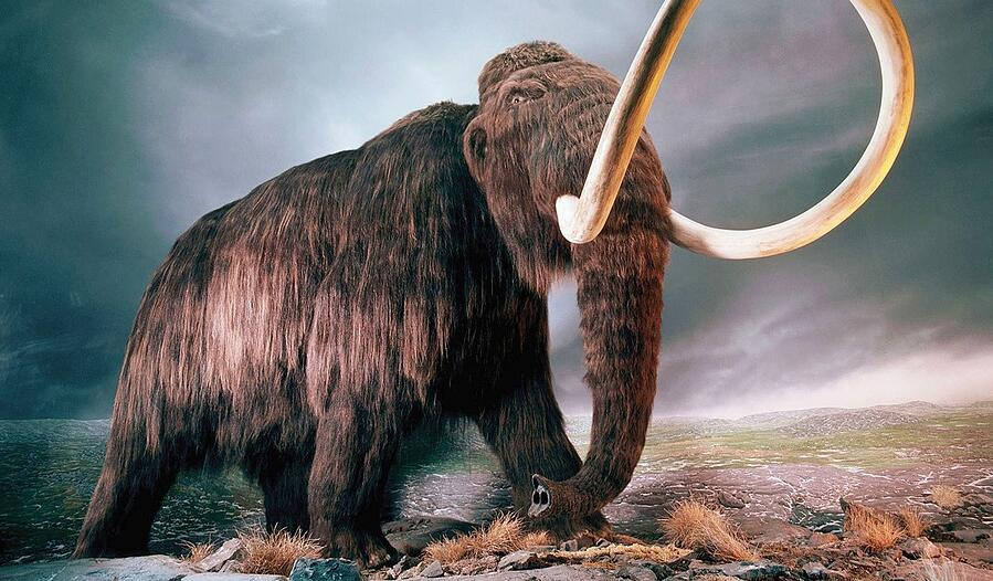 Browsable PDFs - the mammoths of the internet