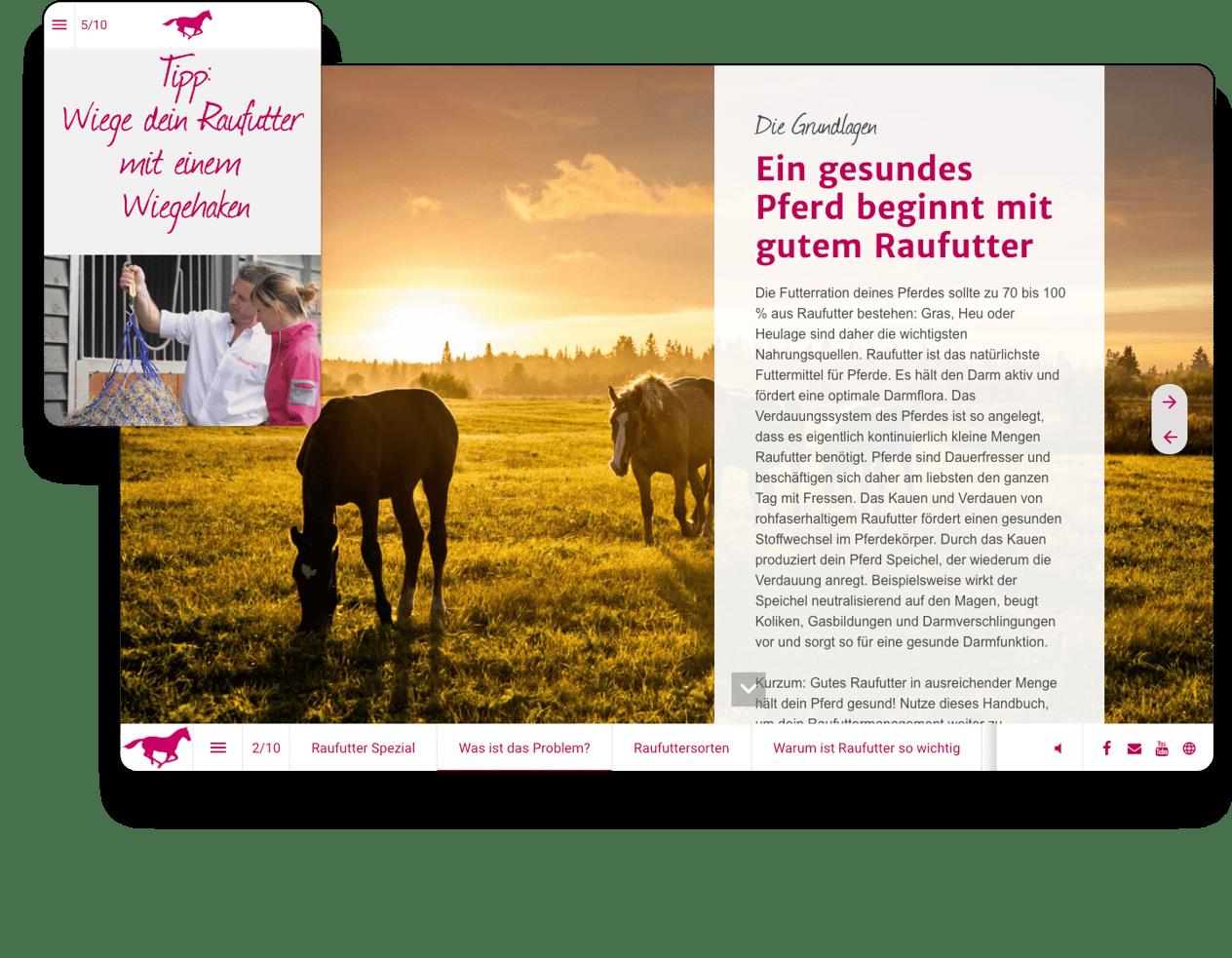 interactive-example-magazine-pavo-de