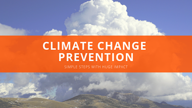 Climate Change Prevention