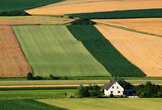 rural_area