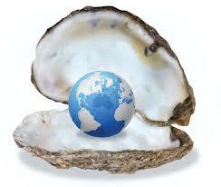 world oyster resized 600