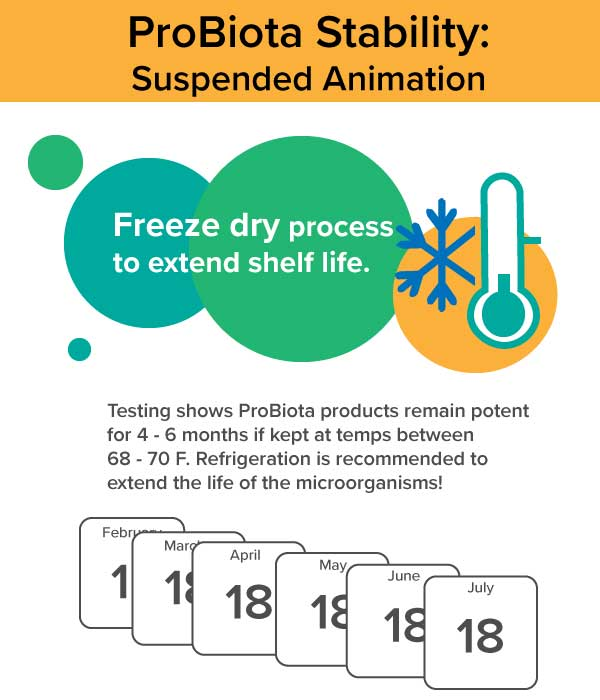 Stability of ProBiotas: Suspended Animation