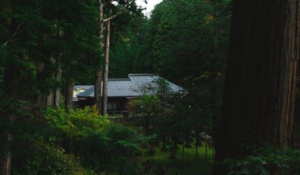 shrine-in-nikko-japan
