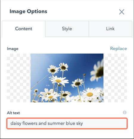 add-alt-text-in-editor
