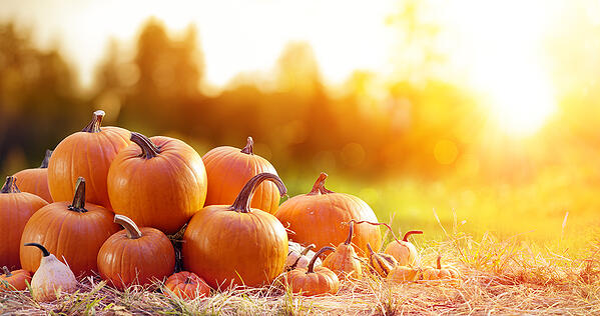 Fall Fun in Granville, Ohio