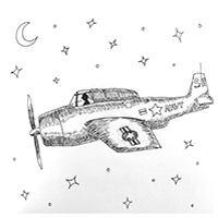 trigs-plane-200sq