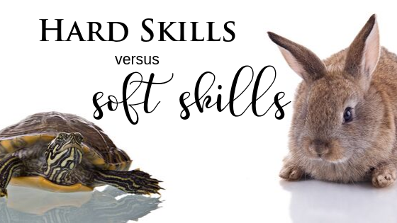Hard and Soft Skills in Business Coaching