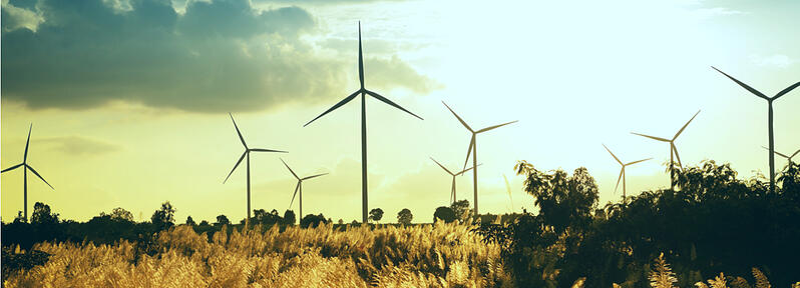 Sustentabilidad energética, ¿actuar ahora o mañana?
