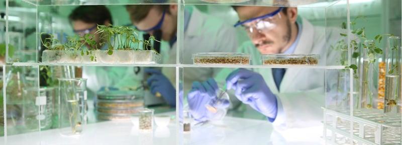 La biotecnología como parte de la vida diaria
