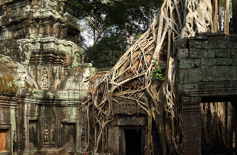Ta Prohm, top destination for aspiring travel writers