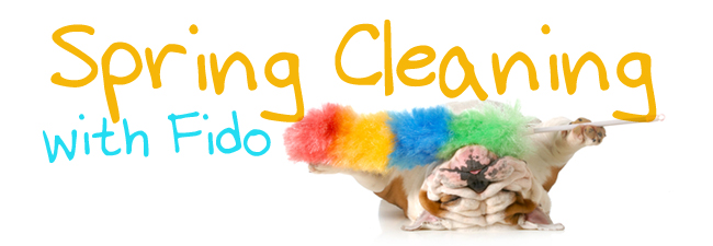 springcleaning_fido_blog