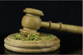 Managing Marijuana Policies in the Workplace: Should You Be Drug Testing Employees?