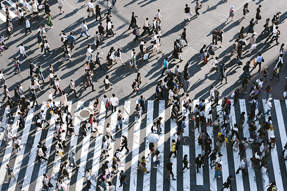 people crossing busy pedestrian crossing 590x